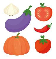 set of fresh and healthy vegetables vector