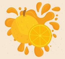 orange fruit with juicy splash vector