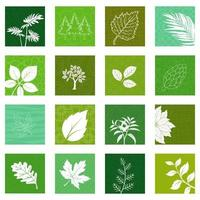 Collection of nature leaves icons vector
