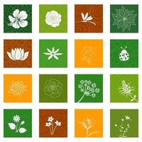 White flowers and leaves icons set isolated on different background for decorative graphic design vector