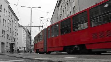 tranvía rojo en la ciudad en blanco y negro