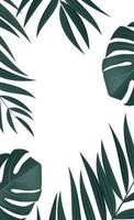 Natural realistic tropical palm leaves on white background vector