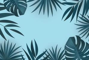 Natural realistic tropical palm leaves on blue background vector