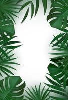 Natural realistic vertical green tropical palm leaves background. vector