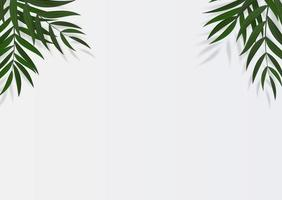 Abstract Realistic Green Tropical Palm Leaves. Vector illustration with copy space
