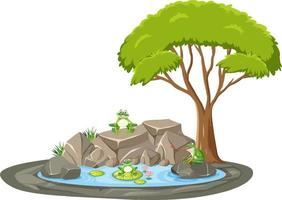 escena aislada con muchas ranas alrededor del estanque vector