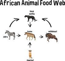 red alimentaria animal africana para la educación vector