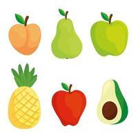 set of fruits and avocado vector