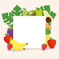 marco cuadrado con frutas tropicales vector