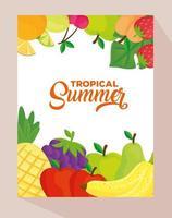 banner de verano tropical con frutas frescas vector
