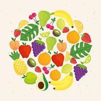 lindo diseño de frutas tropicales frescas vector