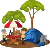 Old couple doing picnic in the park isolated vector