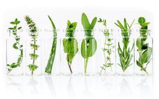 botella de aceites esenciales naturales con hierbas foto