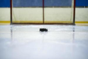 Hockey puck in front of the gate