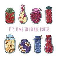 Pickle fruits set vector