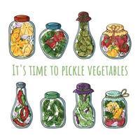 Pickle vegetables vector
