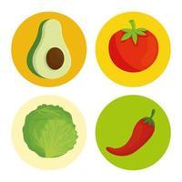 Verduras frescas y saludables en marcos redondos. vector