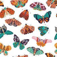 patrón sin fisuras con coloridas mariposas y polillas dibujadas a mano sobre fondo blanco. insectos voladores estilizados, ilustración vectorial. vector