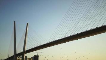 el puente dorado en la hora dorada con pájaros volando debajo
