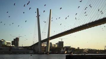 paysage urbain avec vue sur le pont d'or video