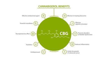 White information poster of Cannabigerol Benefits with benefits with icons and cannabigerol chemical formula vector