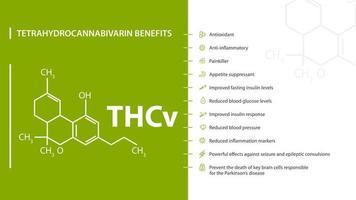 Tetrahydrocannabivarin Benefits, green and white poster with tetrahydrocannabivarin benefits with icons and chemical formula of cannabinol vector