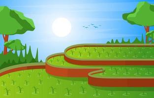 Asian Terraced Rice Field Illustration vector