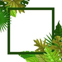 Square Background Template with Tropical Leaf Border vector