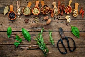 Fresh herbs with spices