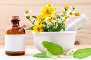 manzanilla para aceite esencial foto