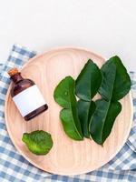 hojas frescas de kaffir foto