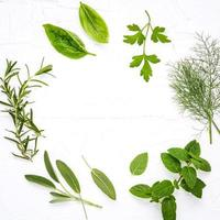 círculo de hierbas frescas en blanco foto