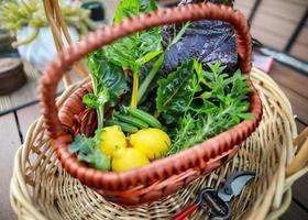 Vegetable harvest in brown woven basket