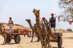 Rajasthan, India 2018- Men riding carriages on camels through desert sand