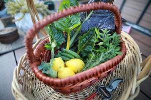 Harvest basket of lemons, greens, peas and herbs