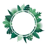 Circular Background Template with Green Tropical Leaves Border Frame vector
