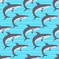 tiburón, pez, seamless, patrón, ilustración vector