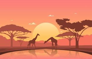 Giraffes at Oasis in African Savanna Landscape at Sunset Illustration