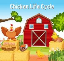 Chicken Life Cycle font in the farm scene vector