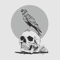 ilustración, cuervo, en, el, cráneo, head., prima, vector