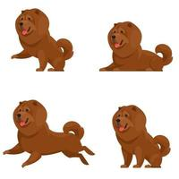 Chow Chow in different poses. vector