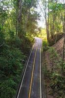 Top view of road in the forest
