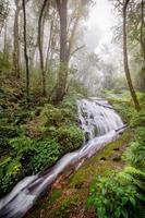 agua que fluye en el parque nacional inthanon, chiangmai, tailandia foto