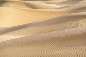 Beautiful sand dune in the Thar desert, Jaisalmer, Rajasthan, India photo