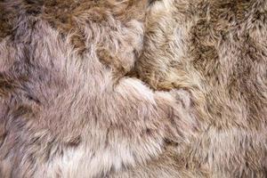 lana de alpaca bebé