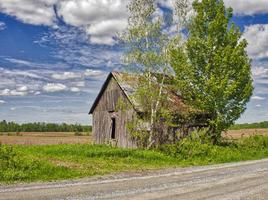 An abandoned barn next to trees in a field and cloudy blue sky