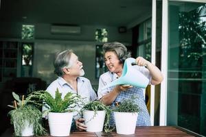 pareja de ancianos hablando juntos y plantando árboles en macetas