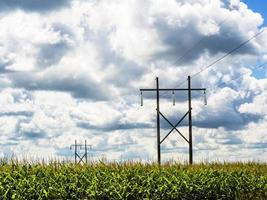 Electricity transmission tower and lines in corn field with cloudy blue sky photo