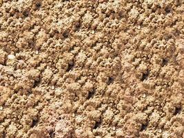 Patch of dry soil for background or texture photo