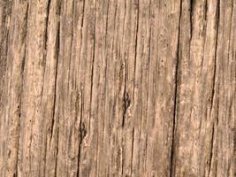 Paneles de madera para fondo o textura. foto